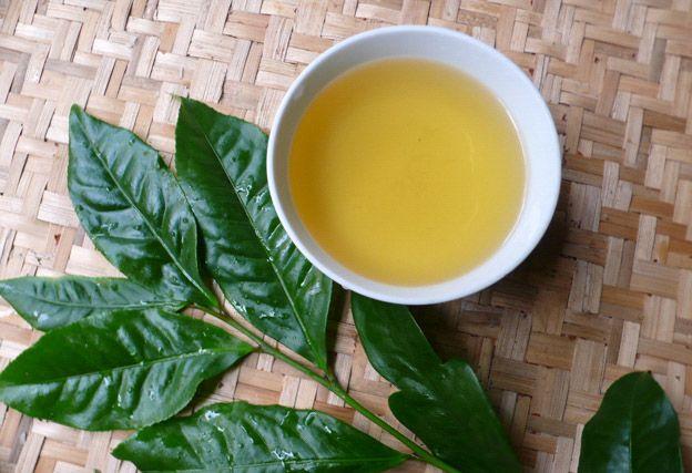 Tác dụng kỳ diệu của trà xanh với các bệnh ung thư