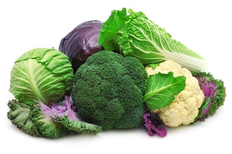 5 loại thực phẩm và thảo dược giúp ngừa ung thư