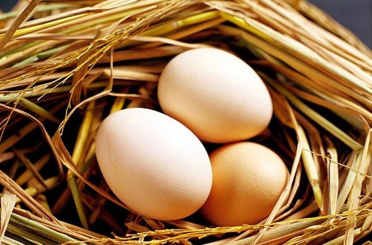 Choline trong trứng có tác dụng giảm 24% nguy cơ mắc ung thư vú