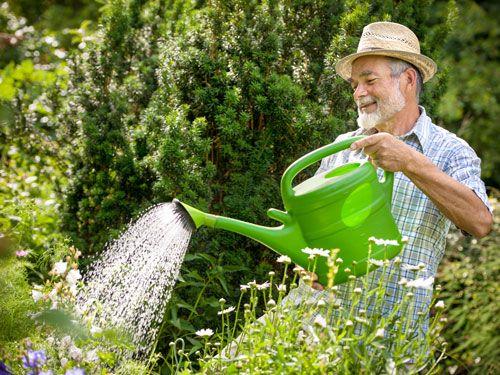 Làm vườn cũng là cách tập thể dục rất hữu hiệu