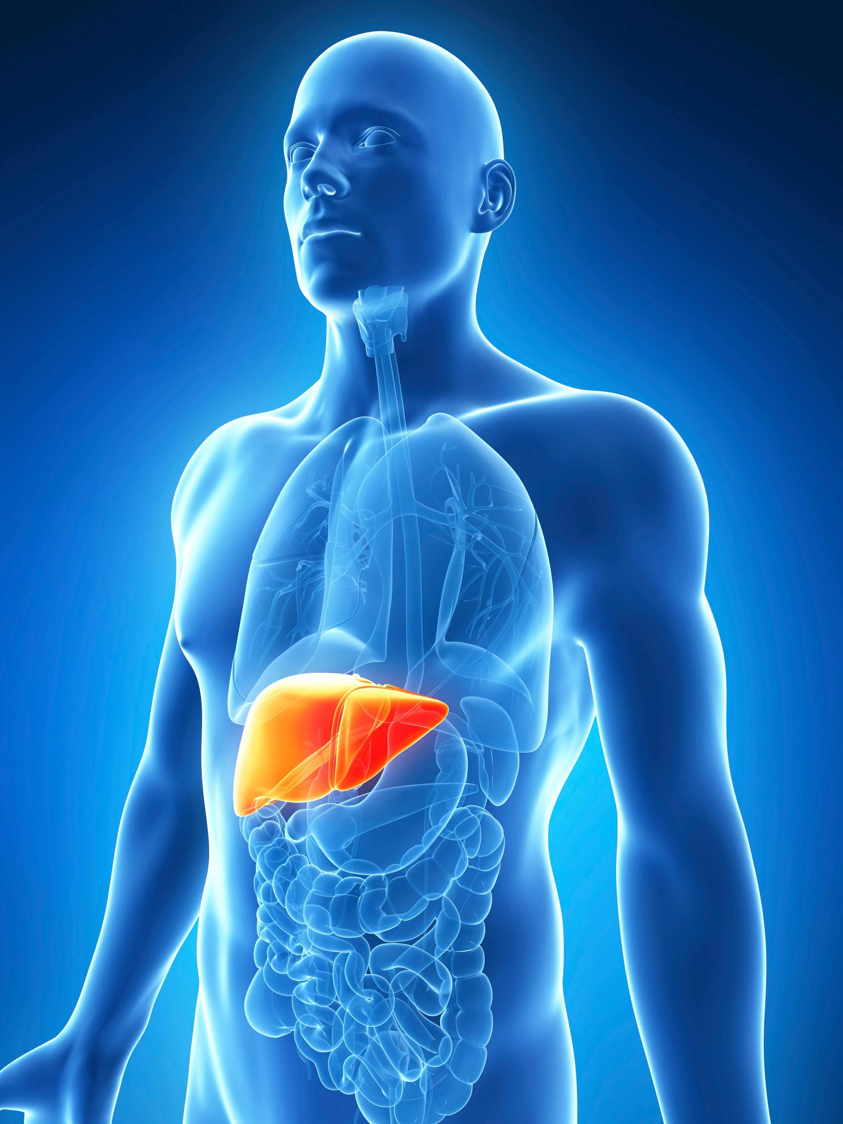 Phẫu thuật cắt bỏ một phần của gan là phương pháp loại bỏ phần gan bị ảnh hưởng bởi ung thư và một số mô xung quanh.