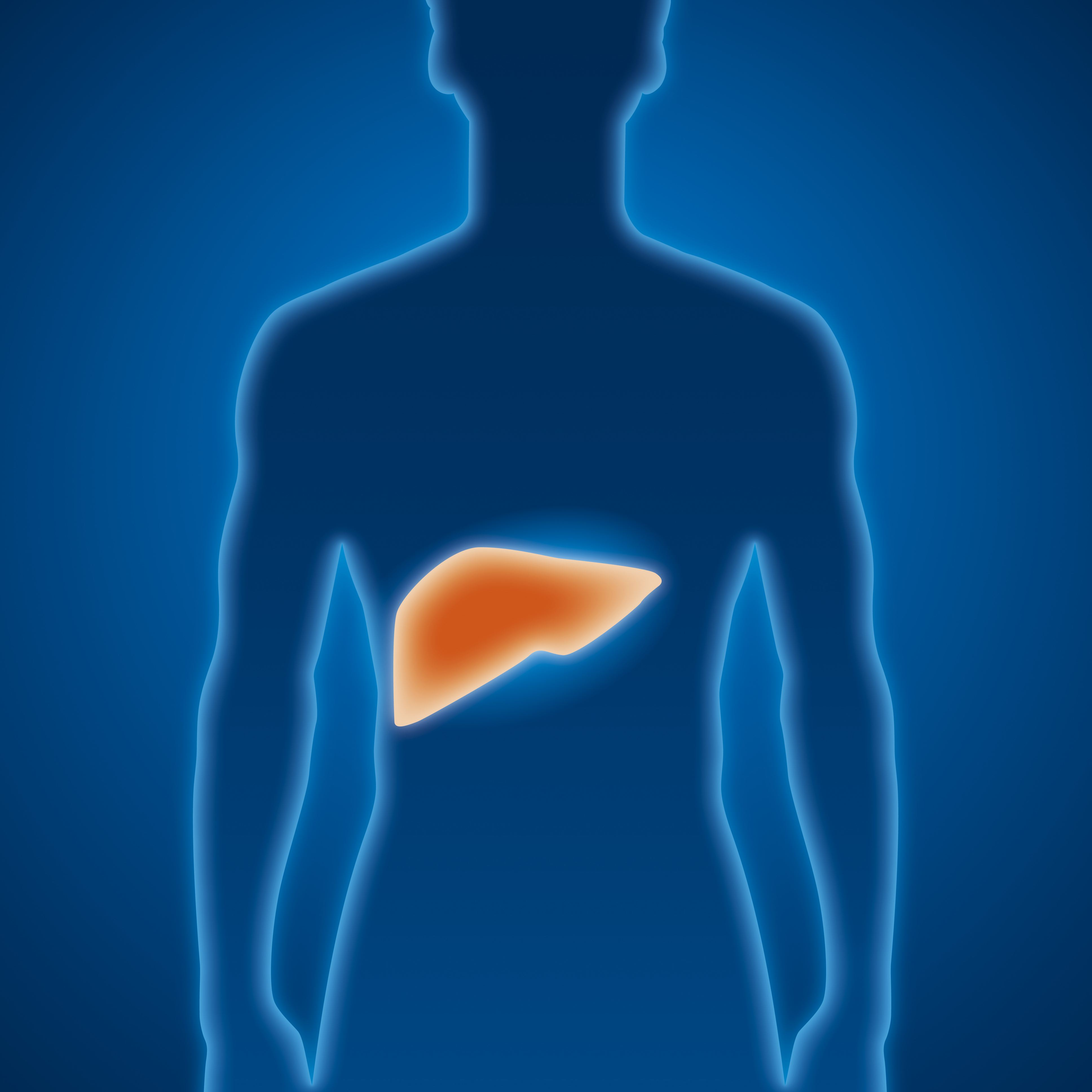 Trong giai đoạn đầu, ung thư gan thường không có triệu chứng rõ ràng. Đó là lý do tại sao những người có nguy cơ cao mắc bệnh cần phải kiểm tra tầm soát ung thư gan định kỳ hàng năm.
