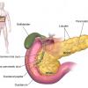 Ung thư tuyến tụy giai đoạn xâm lấn