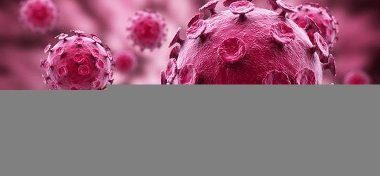 Virus HPV mới chính là thủ phạm chính gây ung thư