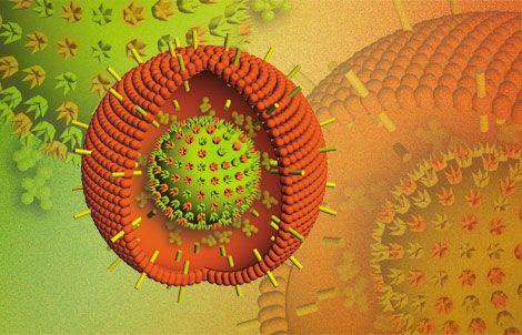 virus-EBV
