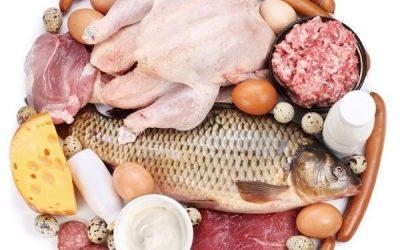 Protein cho bệnh nhân ung thư