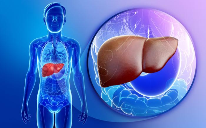 thuốc chữa bệnh nang gan