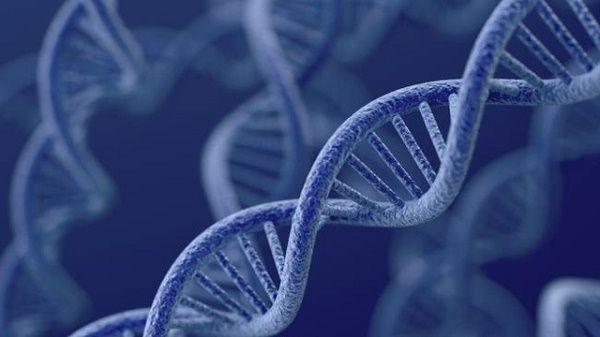 đột biến gen
