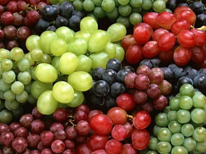 Top 10 trái cây nên ăn mỗi ngày để phòng ngừa ung thư 4