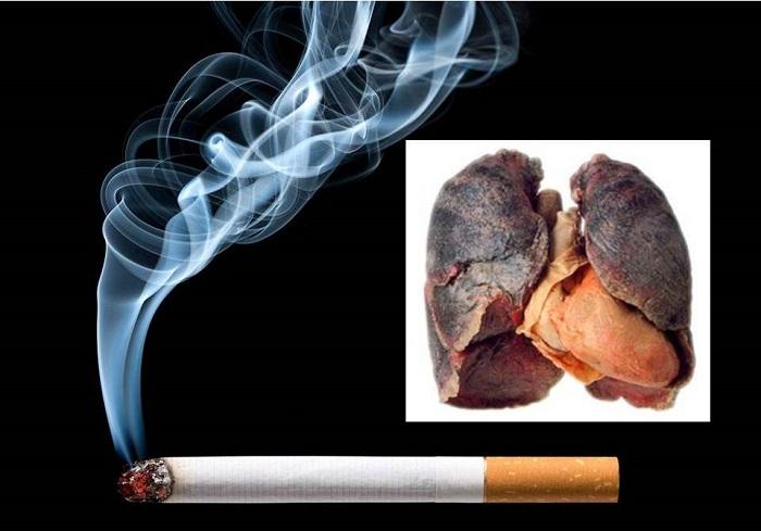 Ăn gì ngừa ung thư phổi 2